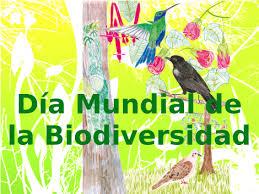 Ilustración de árbol con pájaros. Texto: Día Mundial de la Biodiversidad