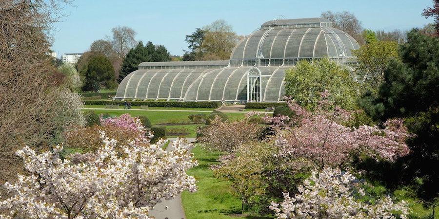 loffit-kew-el-real-jardin-ingles-que-esconde-mucha-envidia-06-900x450